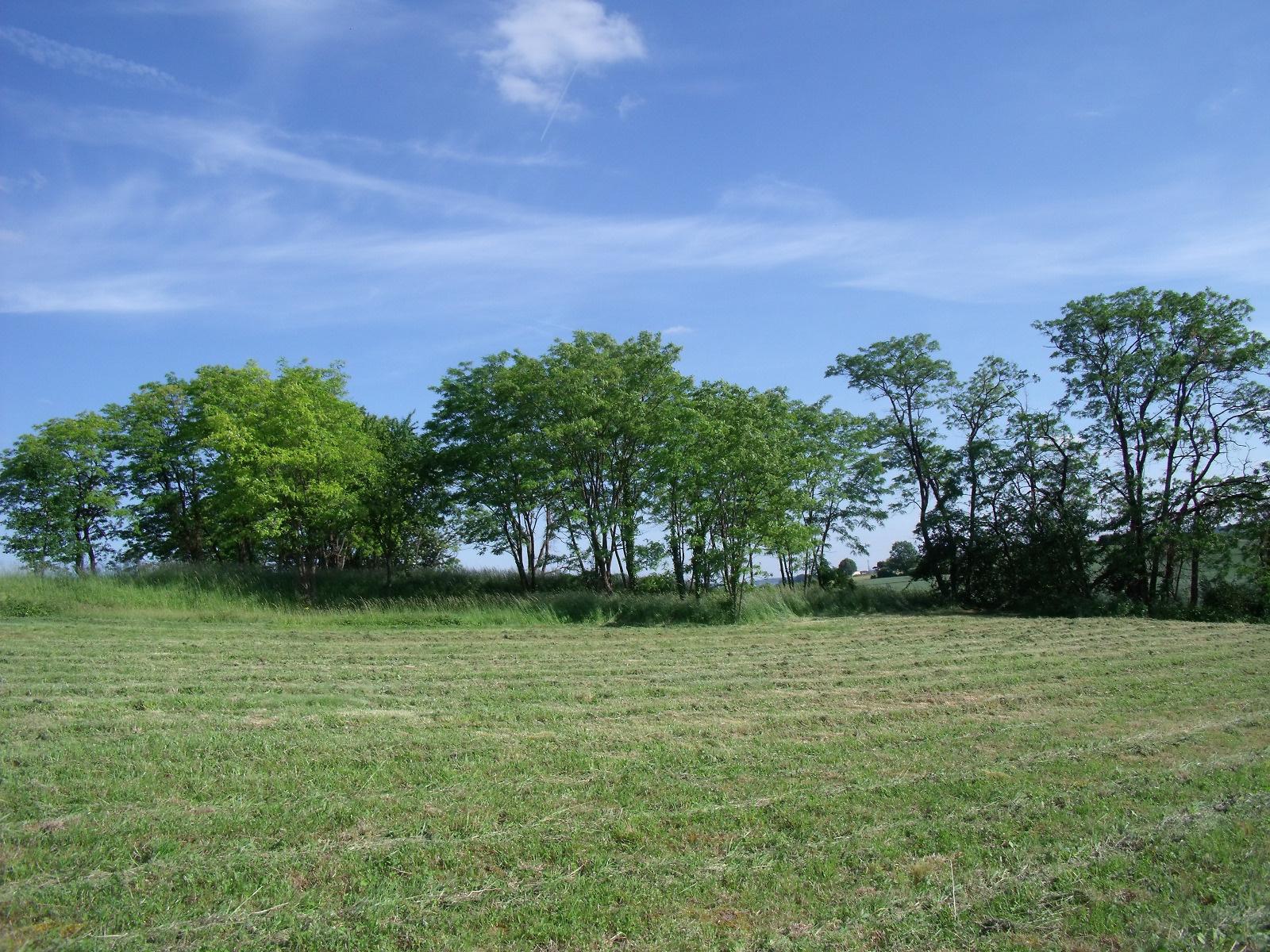 Vente terrain monsegur monsegur 47150